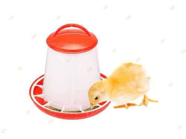 سیستم دانخوری مرغداری
