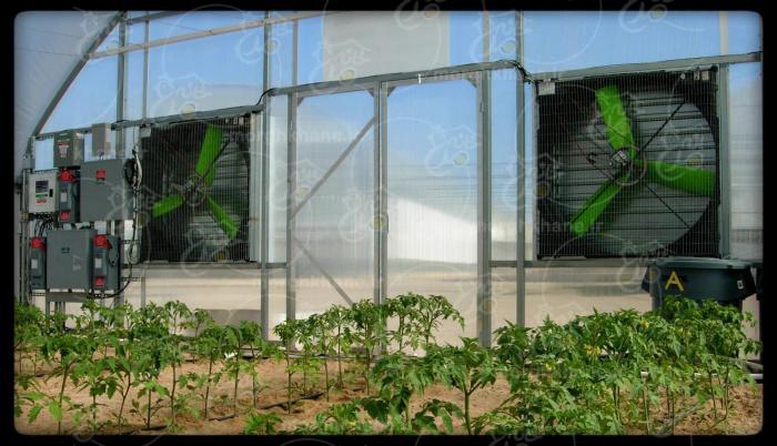 انواع فن تهویه گلخانه